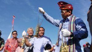 edhy prabowo dan lobster Menteri KKP